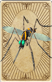 Cloning Mosquito Card
