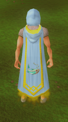 how to change skill capes runescape